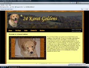 24 Karat Golden Retrievers