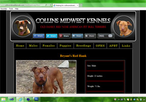 Collins Midwest Kennels